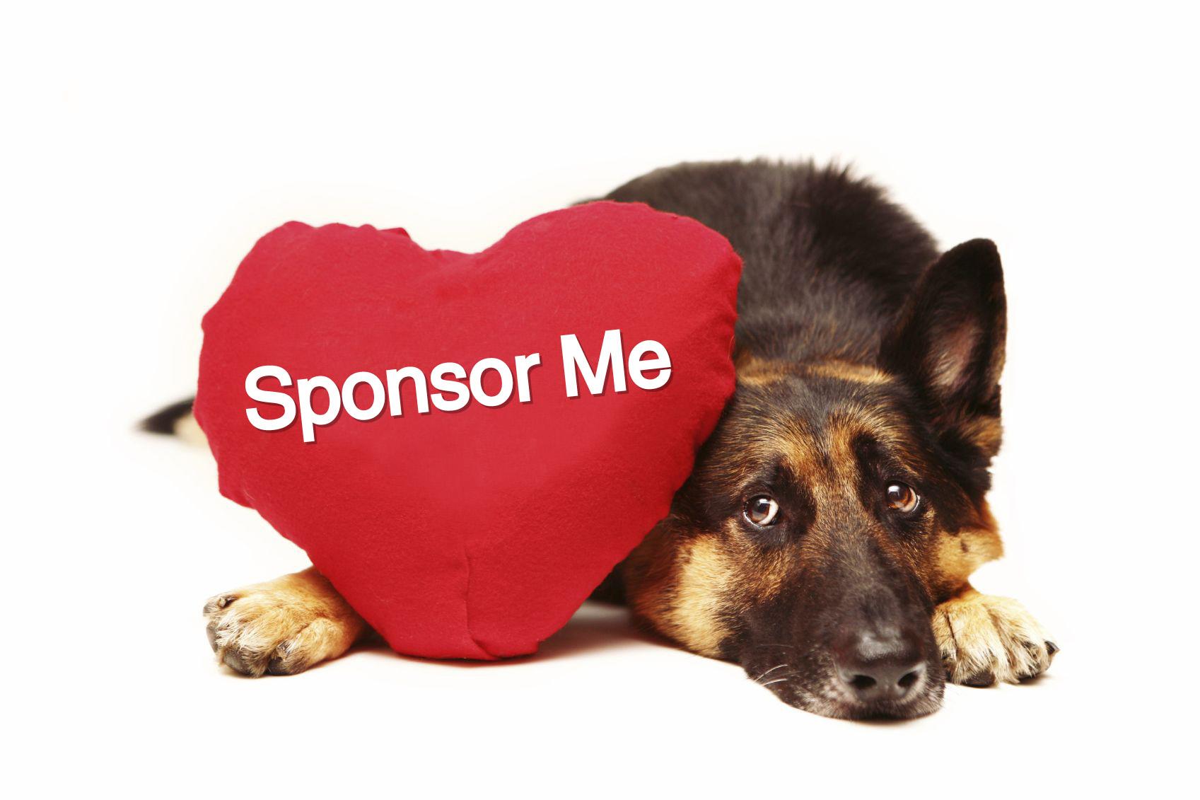 Основное их отличие состоит в том, что спонсорство связано с решением маркетинговых задач компании спонсора (задач, связанных с выходом новой компании на рынок или с продвижением её продукции, услуг), а благотворительность — нет